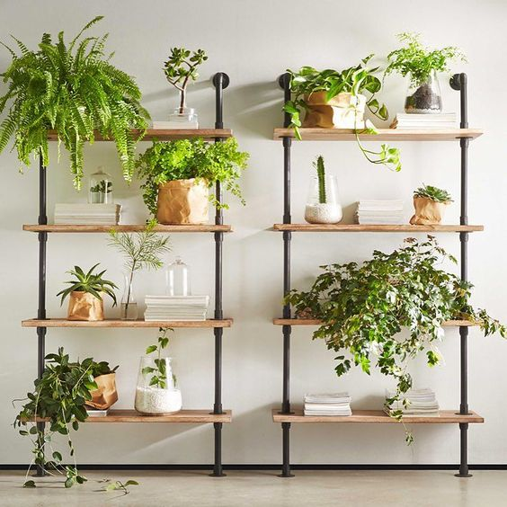 More green in your home
